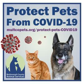 Protect Pets from COVID-19